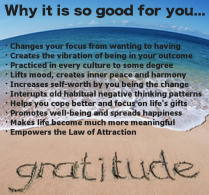 Gratitude Coaching and Speaking